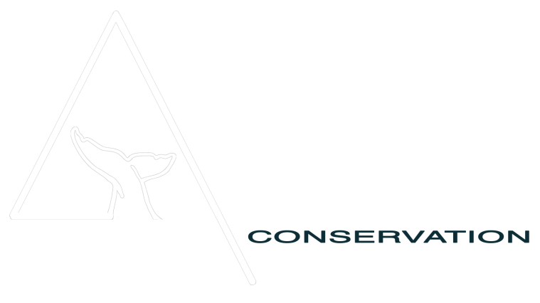 cropped-azul-conservation_white-1.png