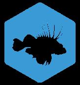 15-lionfish